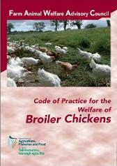 Cover Code of Practice for the Welfare of Broiler Chickens 2008
